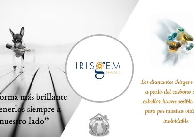 Diseño Irisgem-Incisal
